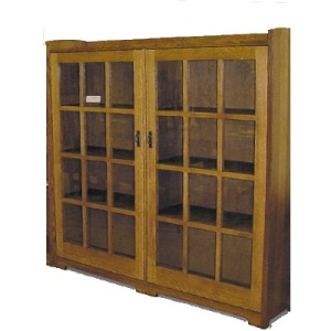Double Glass Door Bookcase